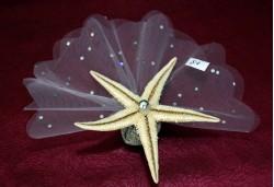 Gerçek Deniz Yıldızı Nikah Şekeri